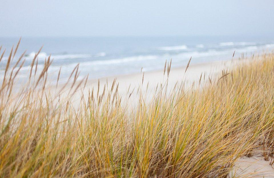 dunes-1936086_960_720.jpg